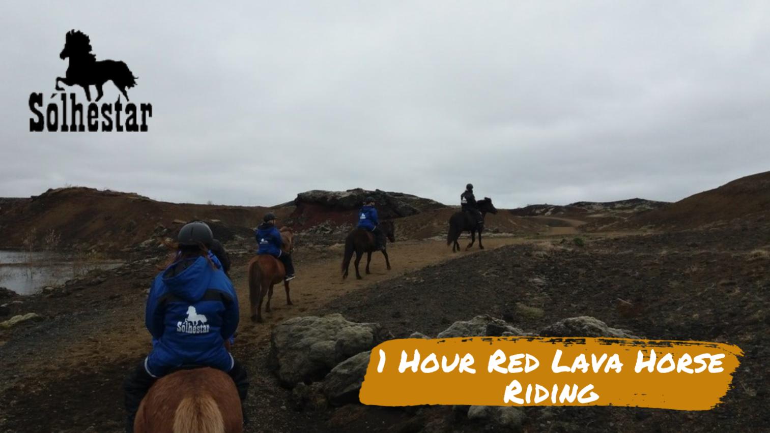 1 Hour Red Lava Horse Riding (Sólhestar Reykjavik