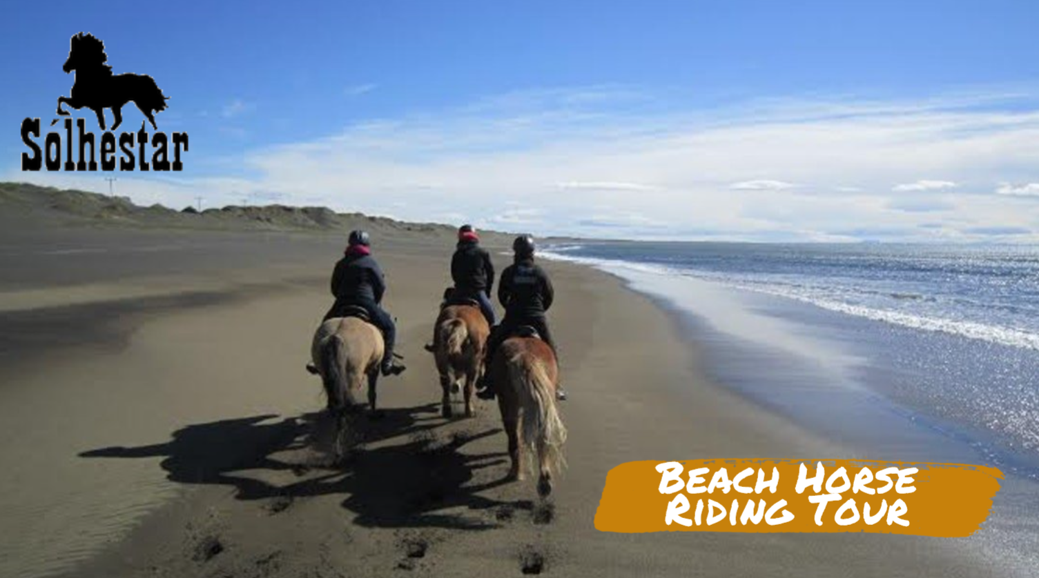 Beach Horse Riding Tour